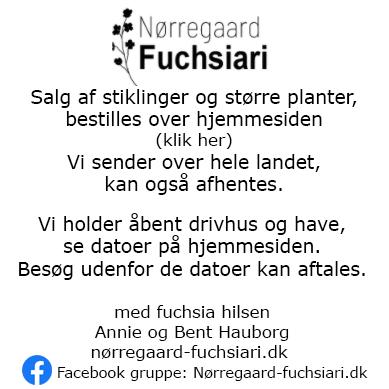 Nørregaard marts 2021